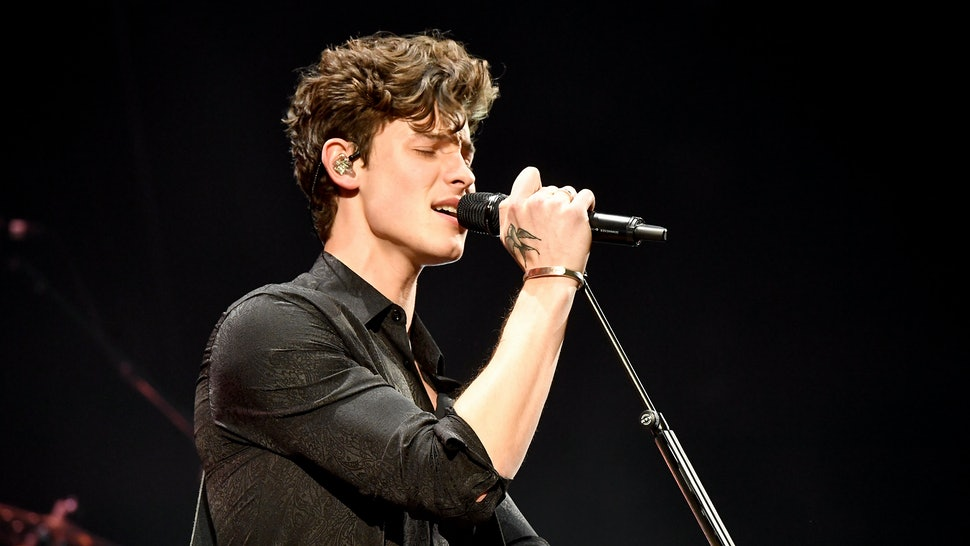 Shawn Mendes 2019 Grammys Performance Included The Perfect
