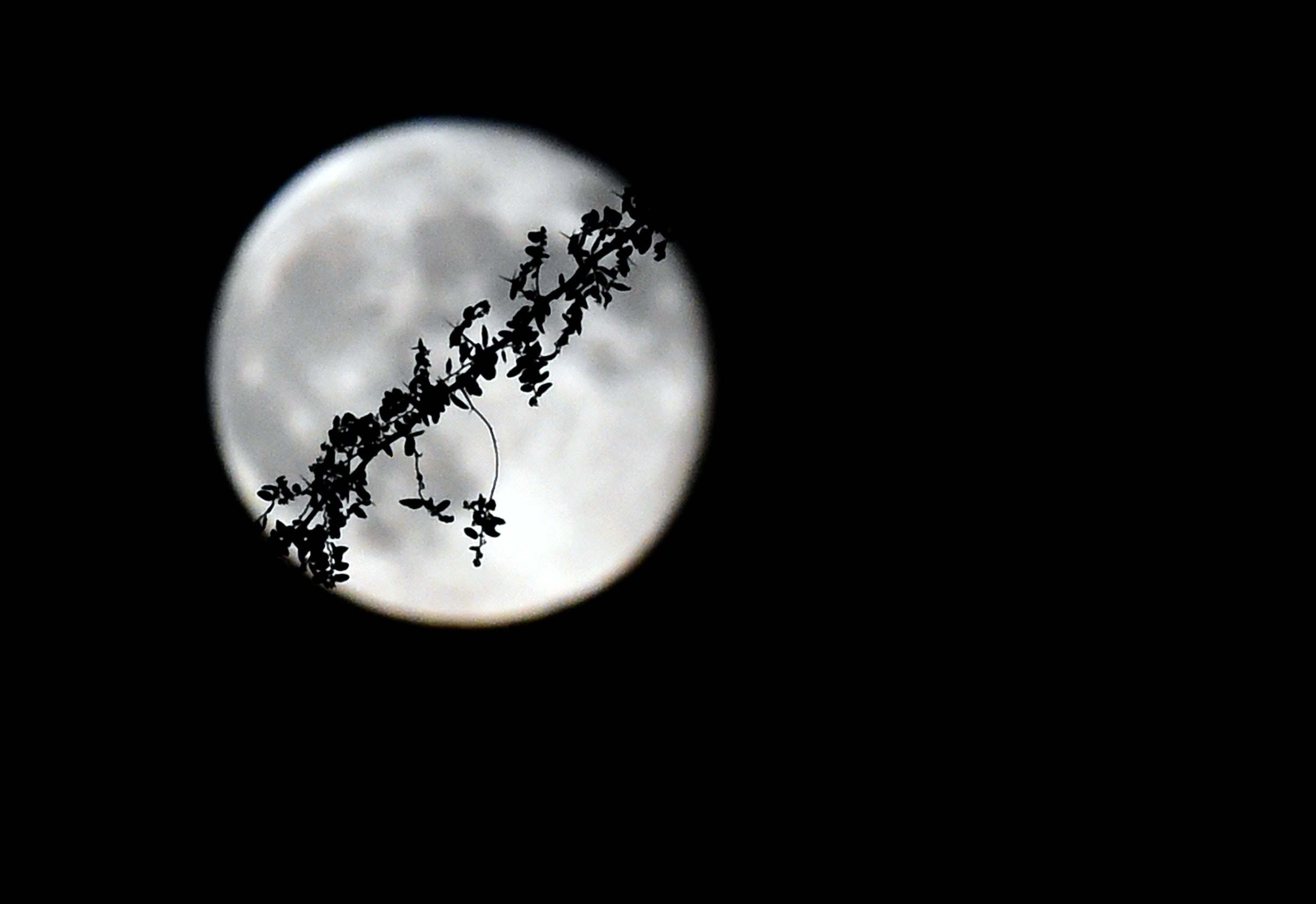 How The July 2019 Full Moon & Lunar Eclipse Will Affect You, Based