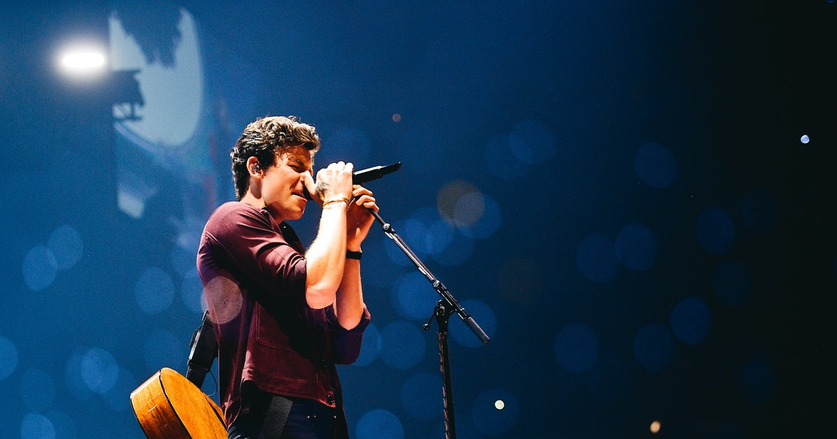 Shawn Mendes' Butterfly Tattoo Was Inspired By A Fan Edit