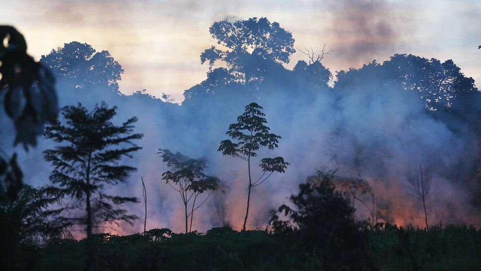 How Did The Amazon Rainforest Fires Start Humans Are To Blame