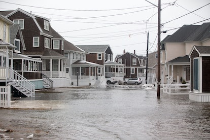 SCITUATE, MA - JANUARY 20:  Minor flooding at high tide along Lighthouse Road during a winter storm that brought snow, sleet and rain to the area on January 20, 2019 in Scituate, Massachusetts. Icy conditions are predicted for much of Massachusetts.  (Photo by Scott Eisen/Getty Images)