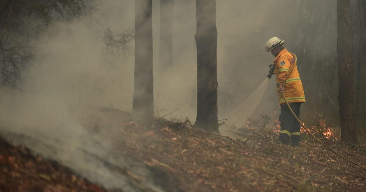 You Can Help Australia Fight The Devastating Bushfires