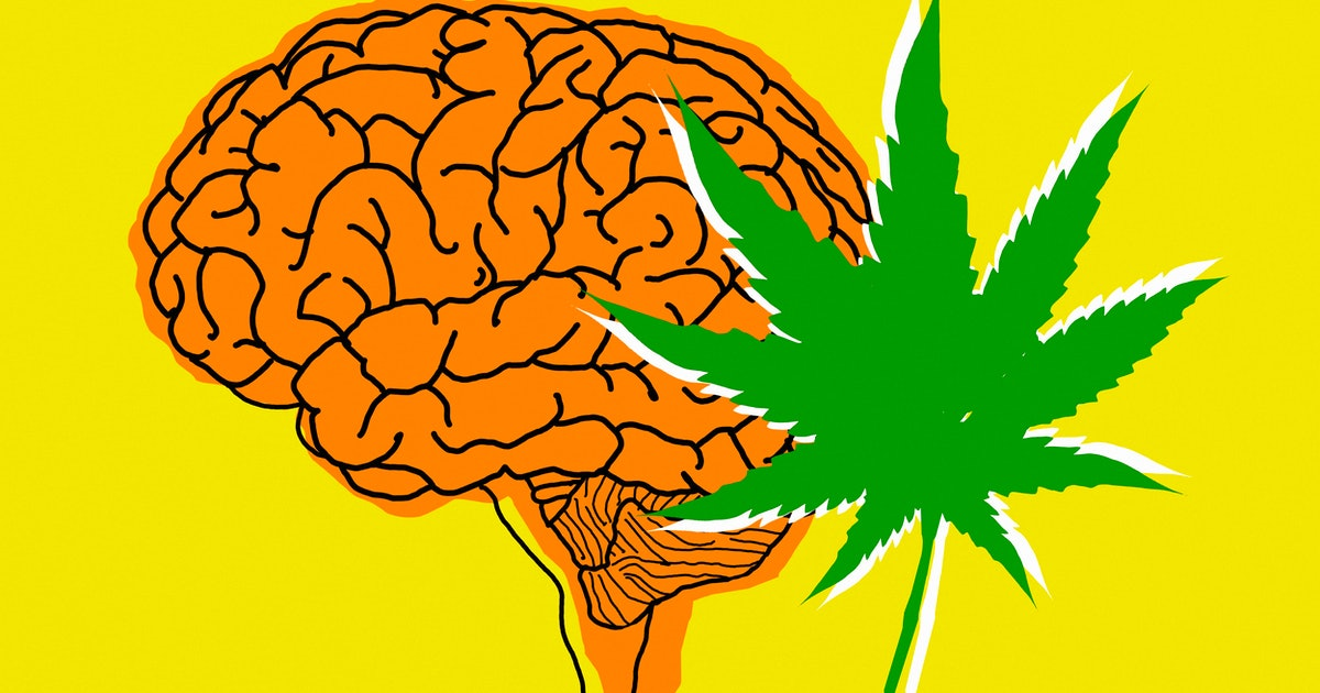 When you quit weed, here's what happens to your mind and body
