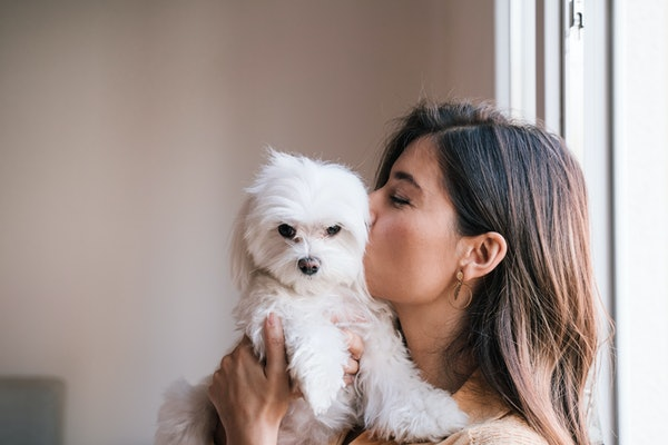 A young woman kisses her fluffy dog while hanging out in a hotel room.
