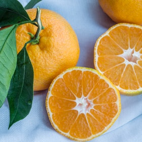 An orange, cut in half, sits next to a full orange, still with leaves on its stem. The best vitamins to take during flu season include vitamins C, A, and D3.