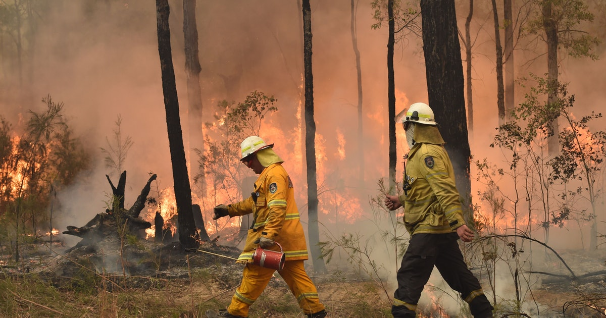 How To Donate To Causes Fighting The Australian Fires