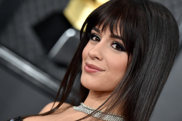 """Is Camila Cabello's """"First Man"""" About Shawn Mendes?"""