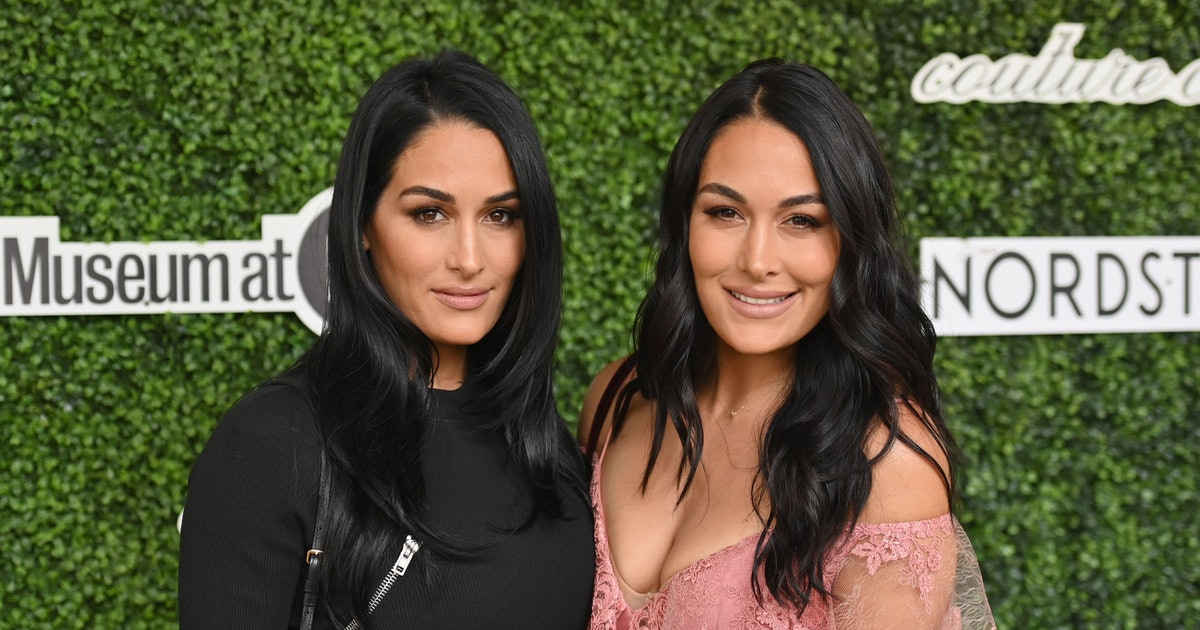 Brie & Nikki Bella Are Both Pregnant — With Very Close Due Dates