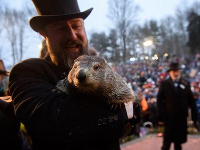 Groundhog Day 2020 is Sunday, February 2.