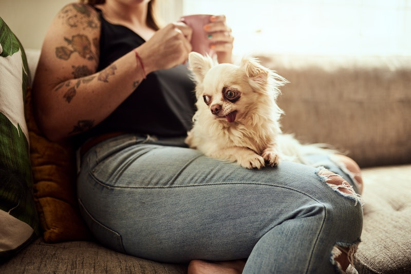 A woman drinks coffee with a dog on her lap. Doing Dry January can trigger symptoms of anxiety, but also reduce anxiety levels overall, experts say.
