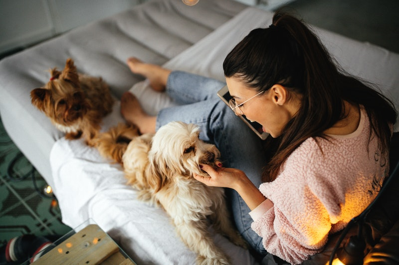 A woman hangs out with her fluffy dog in bed. Some self-care trends in 2020 may be here to stay.