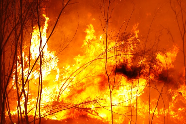 25 people have been reported dead since the beginning of the Australian wildfires.