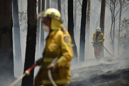 About 2,700 firefighters are reported to be battling the bushfires in Australia.