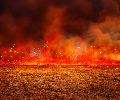 The Australian wildfires are reported to be much larger than the California wildfires in 2019.