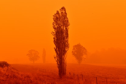 Fire season in Australia typically lasts until January or February.