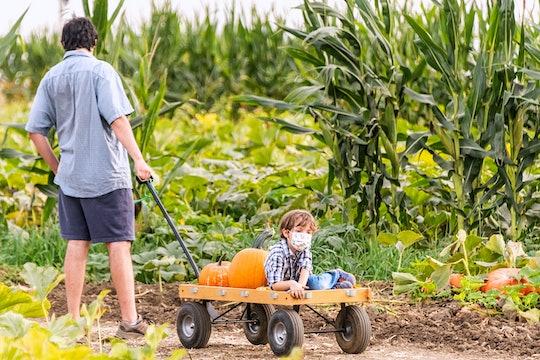 dad pulling boy on wagon in pumpkin patch
