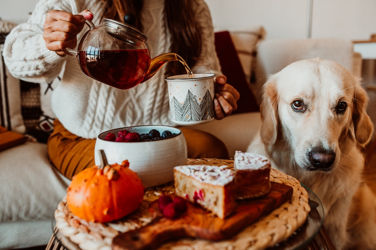 A young woman pours tea into a mug while enjoying a pumpkin spice cake and sitting with her dog.