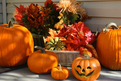 Experts say pumpkins can stay good for five to eight weeks in the right conditions.