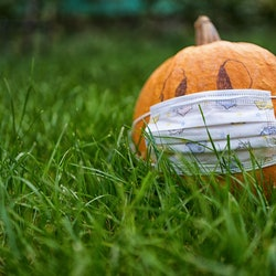 A Halloween pumpkin wears a mask. A doctor explains how to safely celebrate halloween 2020 during the covid-19 pandemic.
