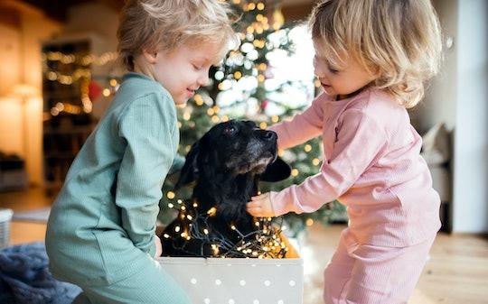 toddler twins playing with dog on christmas