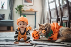 baby and dog in halloween pumpkin costumes