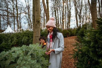 mom and kid at christmas tree farm