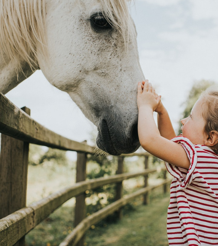 If your kid loves horses, these 15 holiday gifts are sure to impress.