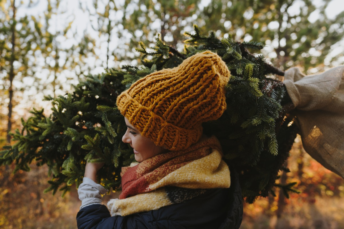 A young woman carries a Christmas tree on her shoulder through a tree farm.