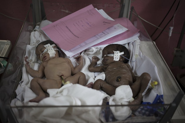 two premature twin infants