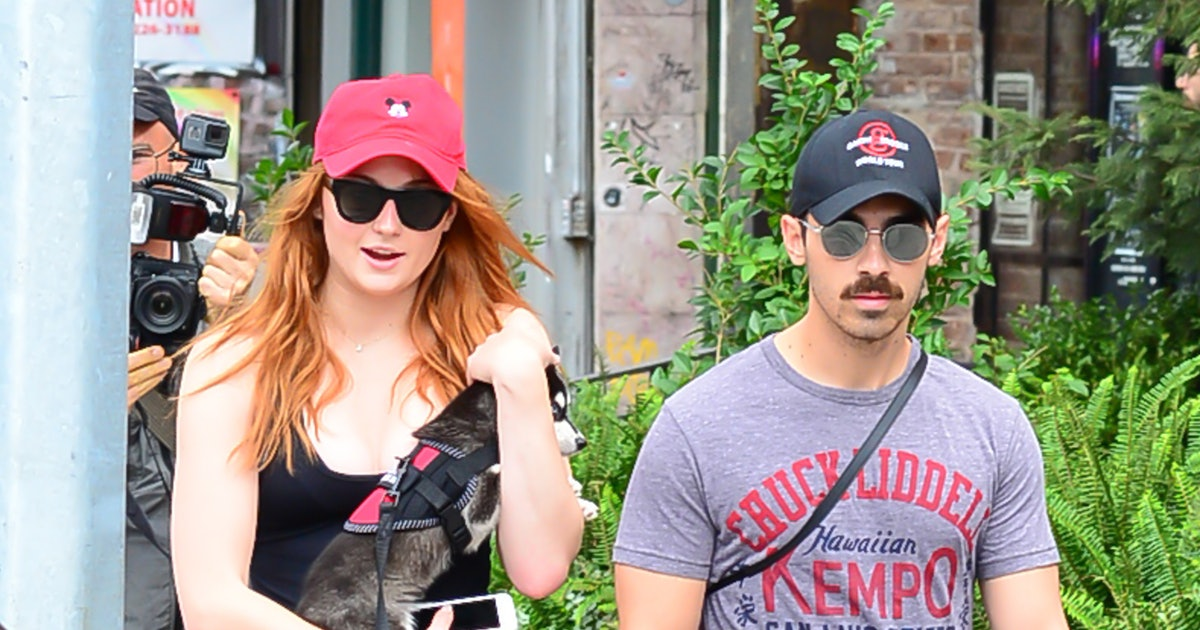 15 Celeb Couples Who Share A Pet & Are Pawsitively Adorable Together