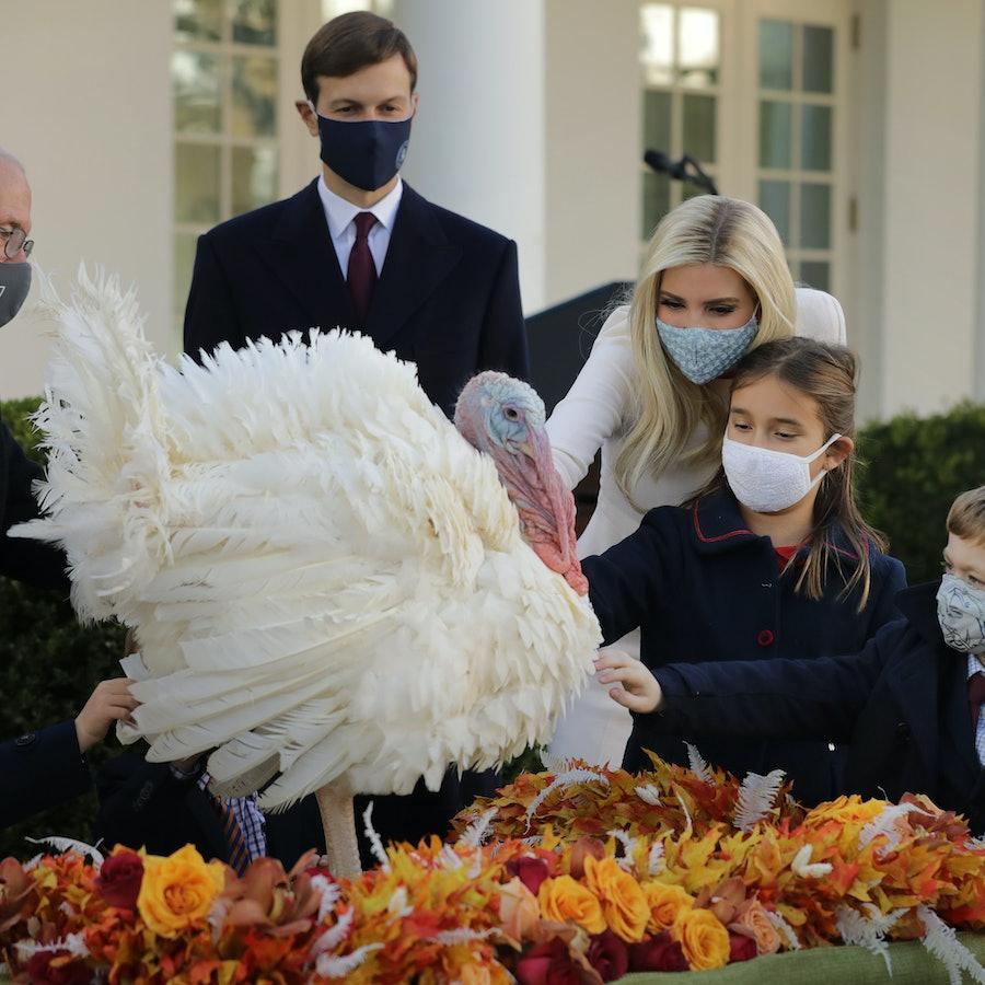 The 2020 presidential turkey pardon