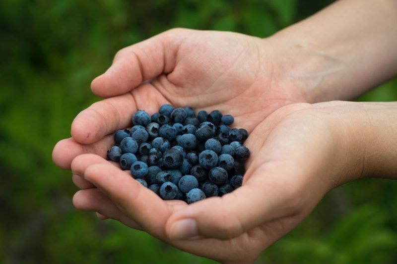 blueberries, berries, fruit