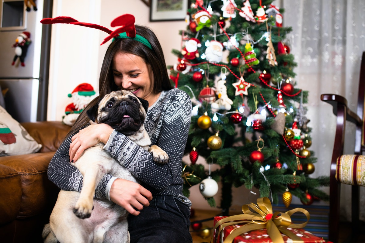 A happy woman hugs her pug dog at home in front of the Christmas tree and presents.