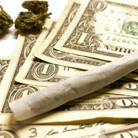 Inverse Daily: 2020 election sends huge marijuana message