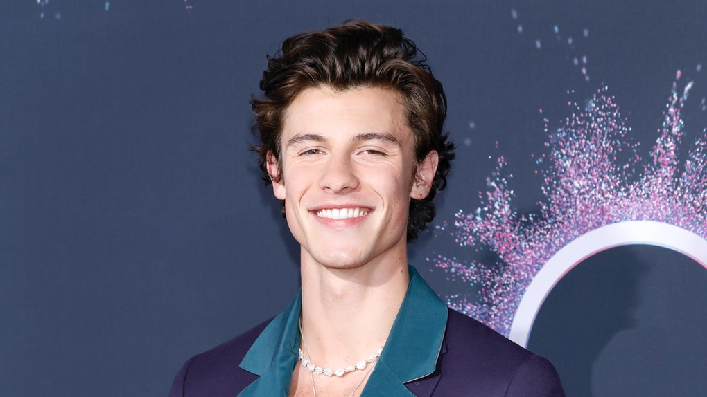 Shawn Mendes hits the red carpet at the American Music Awards.
