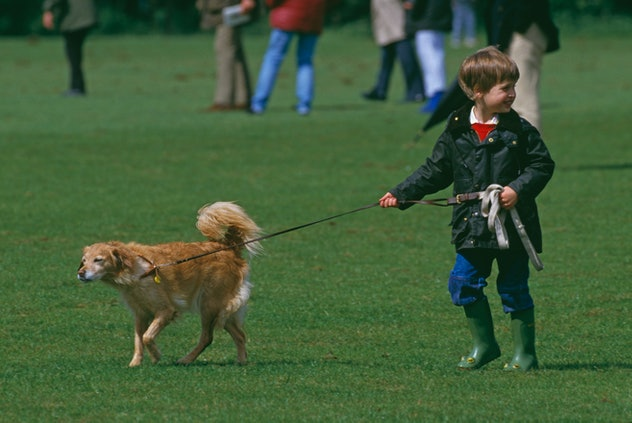 Prince William loves dogs in 1987.