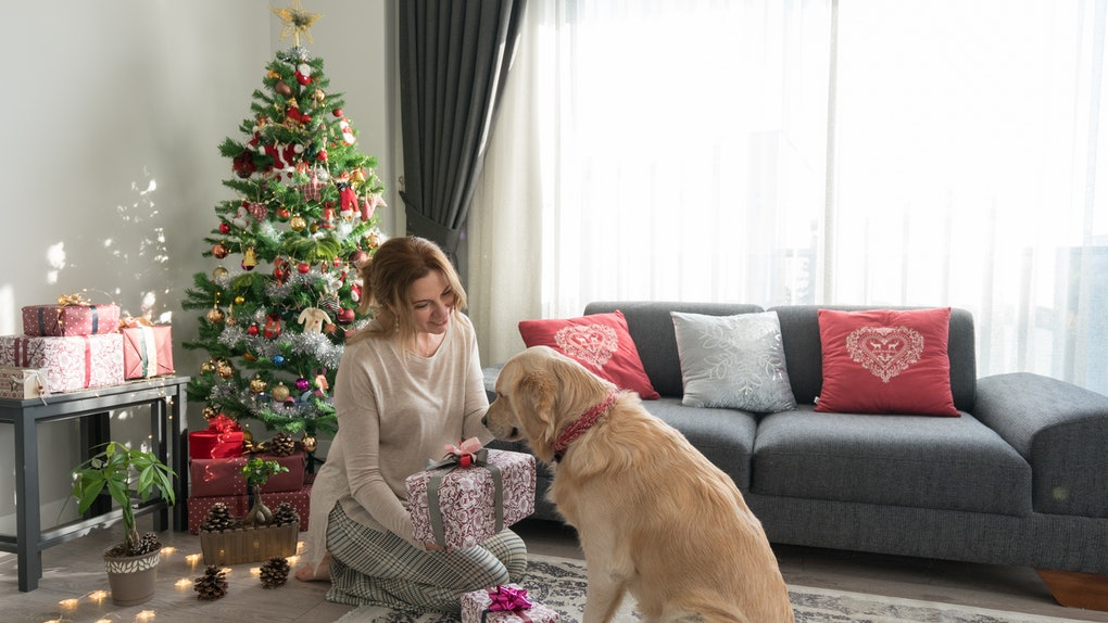 A woman gifts her dog some Christmas presents, as they sit in front of the tree and she shows her golden retriever gift wrapped presents