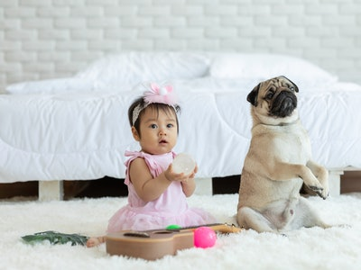 a baby girl and a dog sitting on a carpet