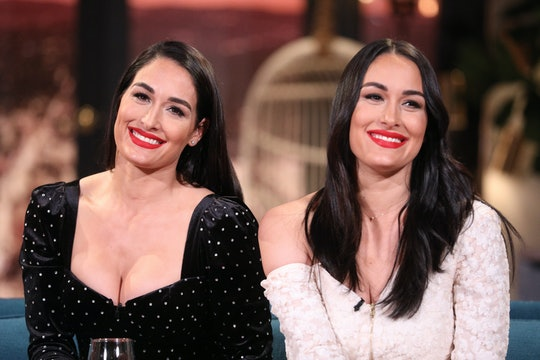 Nikki and Brie Bella didn't plan on getting pregnant at the same time.