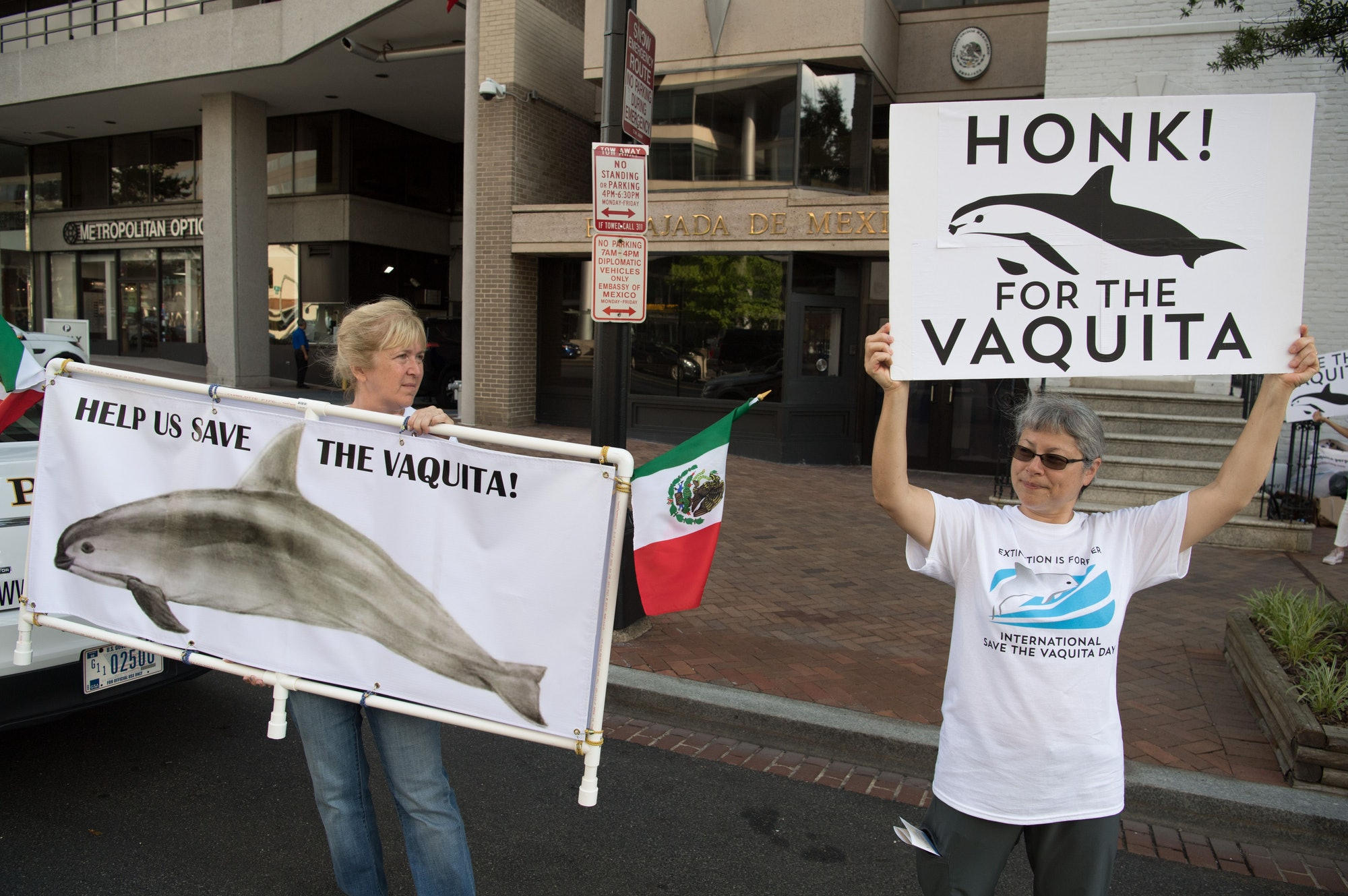 """protestors hold signs saying """"help us save the vaquita"""" and """"honk for the vaquita"""""""