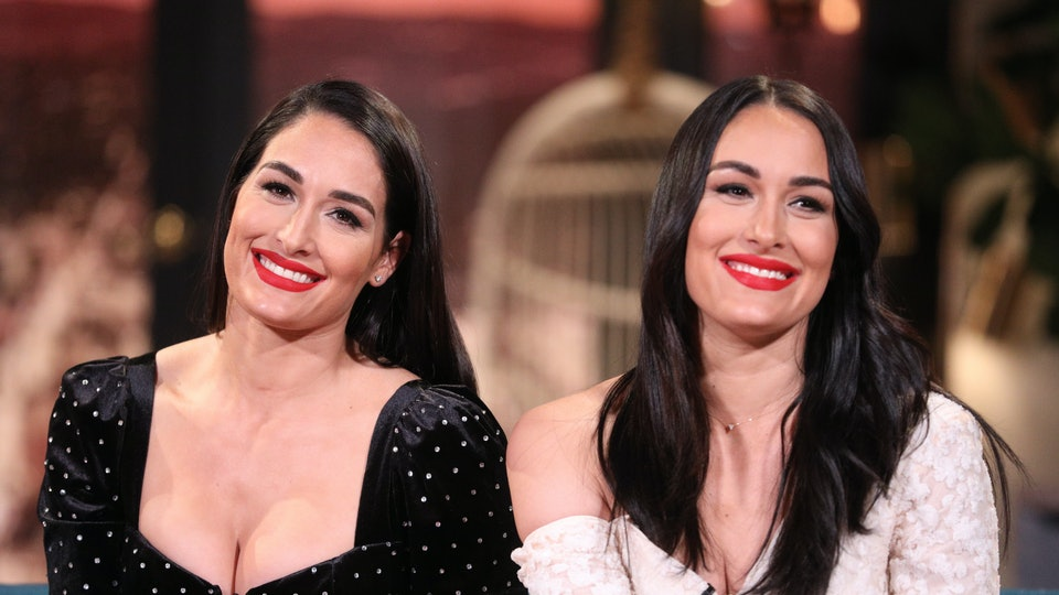 Twins Brie and Nikki Bella announced that they are due in late July and early August — just weeks apart from one another.