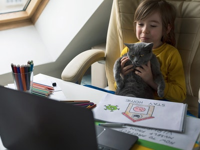 kid holding his cat up in front of laptop