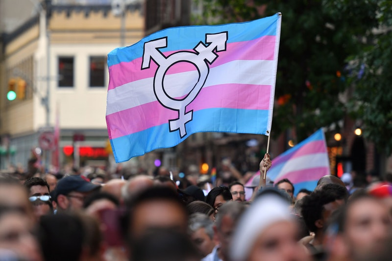 A trans pride flag waving at a march. These statistics prove why transgender day of visibility is so crucial.