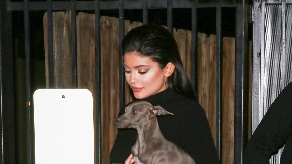Kylie Jenner steps out with her dog.
