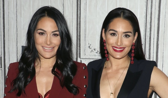 Nikki and Brie Bella appeared on CBS' daytime talk show, 'The Talk' to share their fears about catching coronavirus while pregnant.