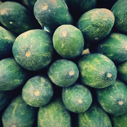 A close up shot of a lot of cucumbers. Experts reveal nine things you should never put on or in your vagina