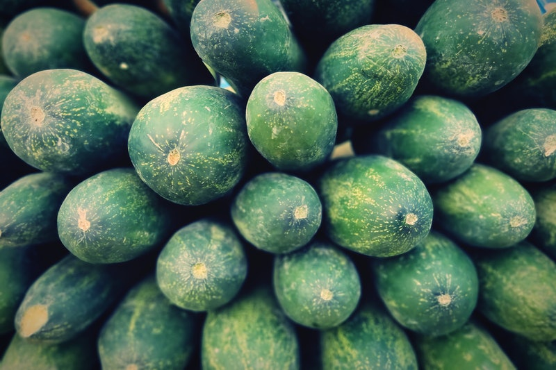 A close up shot of a lot of cucumbers. Doctors share 10 things not to put in your vagina or on your vulva. Consider the mystery of how safe is coconut oil in your vagina solved.
