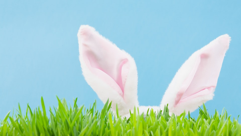 there's now a way to track the Easter bunny with your kids, all from the comfort of your own home.