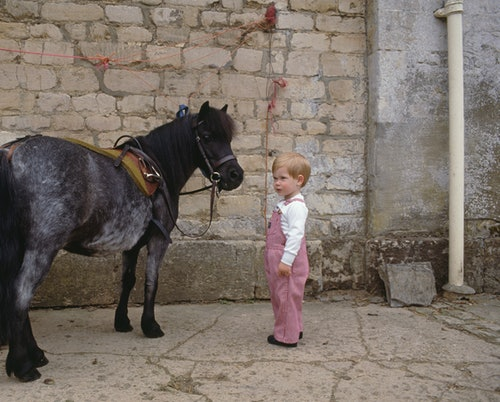 Prince Harry greets a horse and wears overalls.