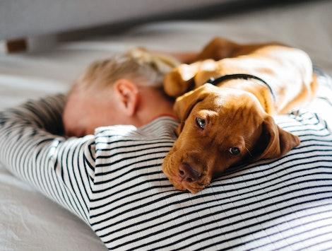 A woman sleeps. Chronic fatigue syndrome, or myalgic encephalomyelitis, might become more common in the wake of the coronavirus, experts say.